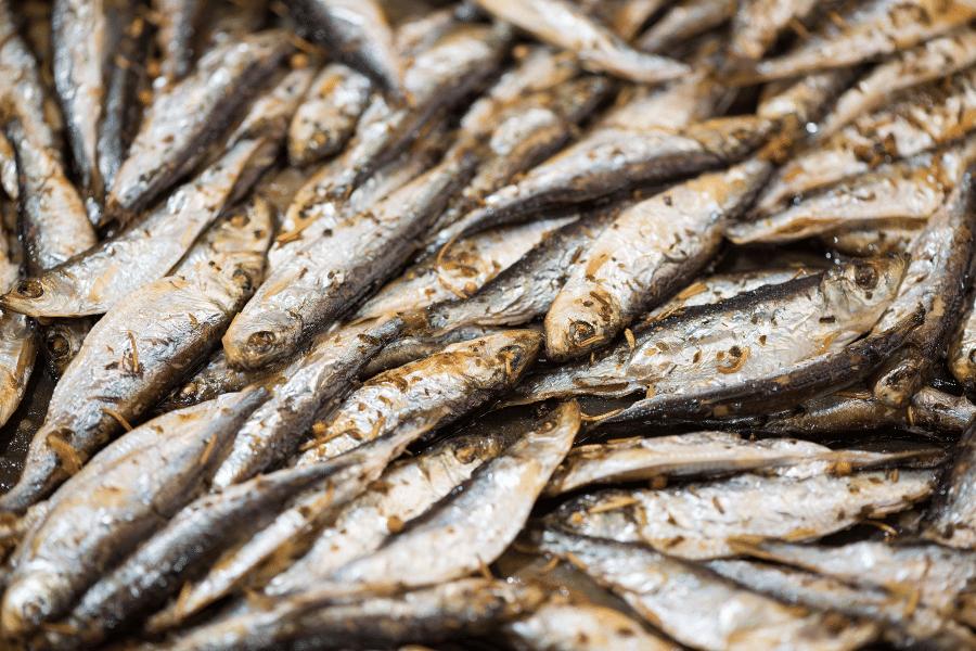 Αθερινόπιτα από την Χίο