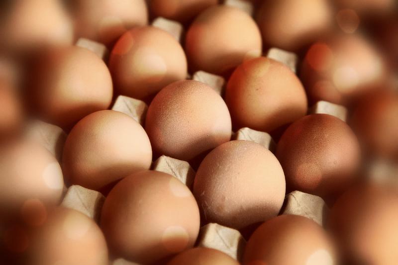 Πόσο φρέσκα είναι τα αυγά που έχετε;